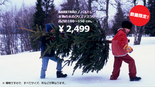 IKEA もみの木